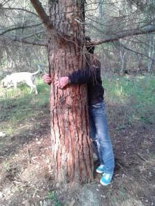 albero_riky