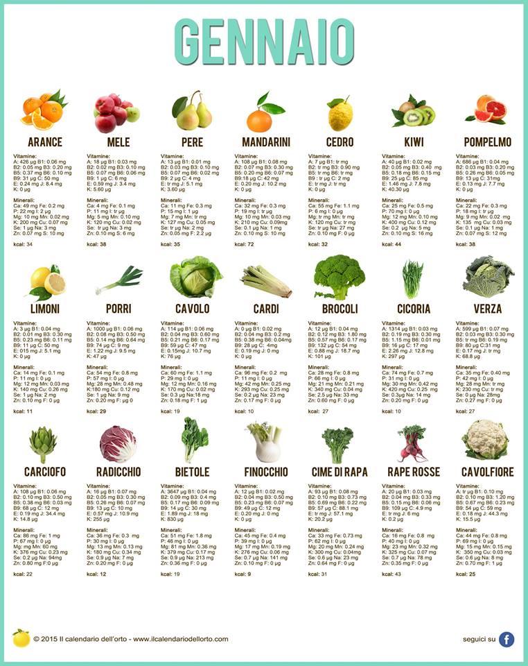 Orto di gennaio 2016 marcheplace le marche in un blog - Calendario trattamenti piante da frutto ...