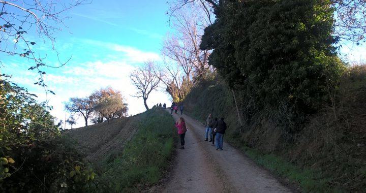 rural Marche