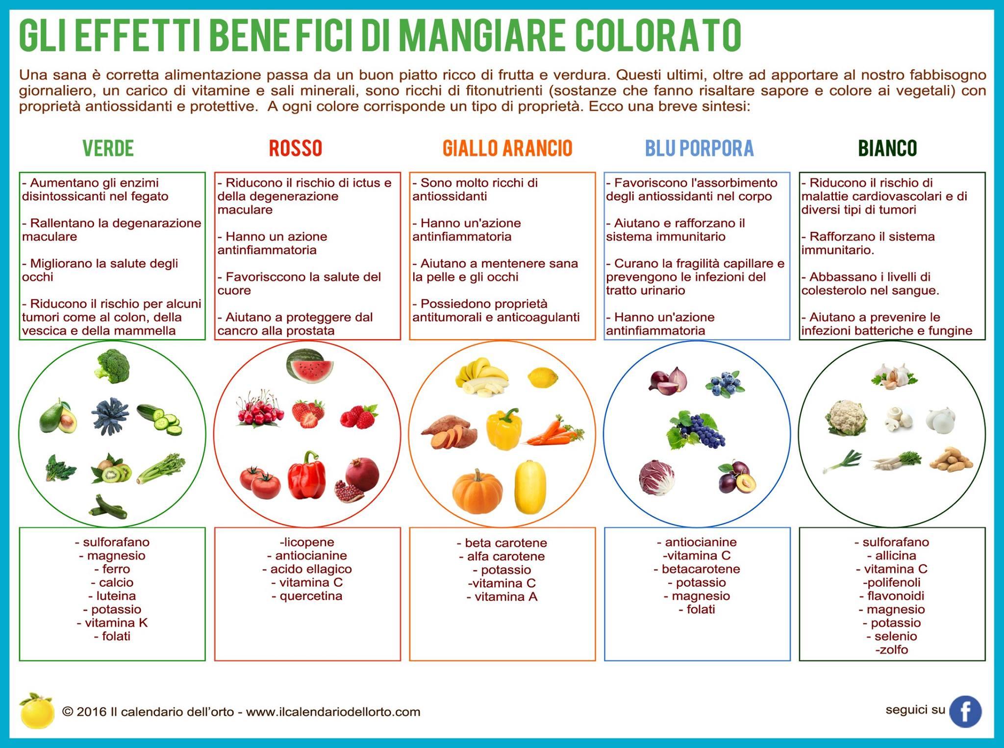Favoloso Mangiare sano, consapevole e colorato - MarchePlace; Le Marche in  LP23