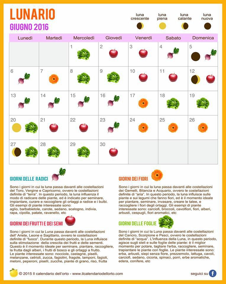 Calendario Lunare Potatura.Giugno Semina Orto E Giardino Calendario Lunare 2017