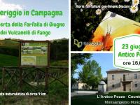 Storie farfallose e Vulcanelli di Fango